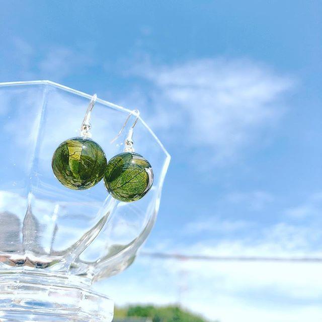あじさいのピアス。お天気に映える(*^^*)#ガラスドームのピアス #あじさいピアス #ハーバリウムピアス #ハーバリウム #花手鞠